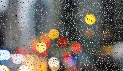 淡々と過ごす雨降りの日