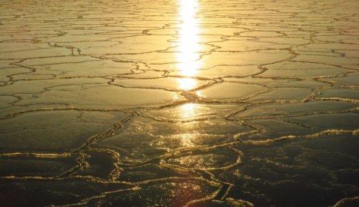 七十二候『魚上氷』