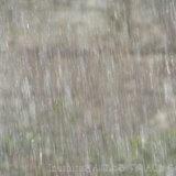 春雷と大雨
